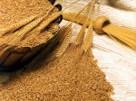 Government Imposes 10 Tax On Wheat Pulse Imports