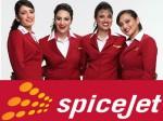 Spicejet Posts Rs 72 80 Cr Net Profit First Quarter