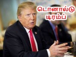 If Donald Trump Becomes Us President India May Gain