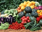 In Chennai Today 29 11 2016 The Price Vegetables
