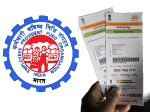 Epfo Allows Withdrawals From Pension Account Without Aadhaar