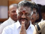 O Panneerselvam S Family Income Land Holdings Zoomed Last 10 Years