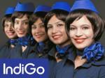 Indigo Cancels 42 Flights Today