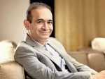 I M Too Busy With My Business Nirav Modi