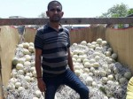 Gujarat Farmer Earned 21 Lakhs 70 Days Just With 1 6 Lakh Investment