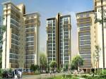 Ansal Housing Construction Company Fails Give Home The Last