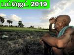 No Benefits Farmers Budget