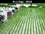 Budget 2019 20 Middle Class People Expectation From Governm