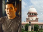 Mahendra Singh Dhoni Moves Supreme Court Over Cheating By Amrapali Group