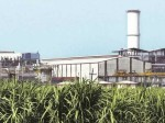 Sugar Production 3 21 Crore Tones 1 5 Increase Says Isma