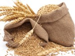 Wheat Procurement Touches 55 17 Lakh Tone In