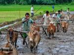 Pm Kisan Samman Benefits To 14 5 Crore Farmers