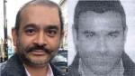 Nirav Modi Interpol Issued Red Corner Notice To Nirav Modi Brother Nehal