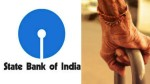 Four Crore Senior Citizens Affect For Falling Fd Rates In Sbi