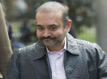 Nirav Modi Threatens Uk Court To Kill Himself If Extradited To India