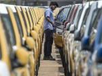 Retail Passenger Vehicles Sales Increased In November