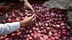 Onion Prices Touched Rs 200 Per Kg At Some Places