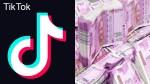 Tiktok India Donates 100 Crore To Fight Covid