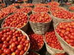 Tomato Price Surging In Delhi Today Per Kg Is Rs 80