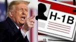 Trump Visa Ban Cost 100 Billion In Losses To Us Companies