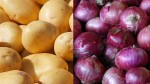 Price Potato Up 92 Onions By 44 In Just One Year