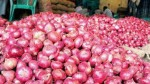 Government Allows Onion Export From January