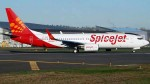 Spicejet Indigo Irctc Shares Rally Upto 15 As Govt Lifts Cap On Domestic Flights