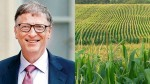 Bill Gates Turned To Be Biggest Owner Of Farmland In America