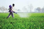 Pmfai Demands Gst Reduction On Pesticides To 5 From