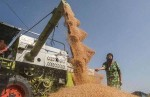 Farm Exports Jumped 9 8 In April To December
