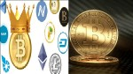 Bitcoin And Dogecoin Are Ruling The World But Indian Investors Being Let Down