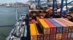 Container Shortage Hurts Fresh Export In India