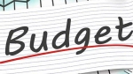 Budget 2020: அரசு எதிர் கொள்ள இருக்கும் பட்ஜெட் சவால்கள்..!