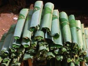 Plantain Leaf Price Rise Dulls Wedding Season