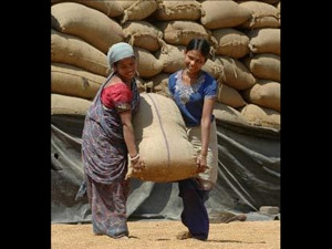 Rice Export India Lose First Place