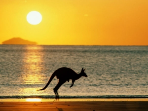 Australia Ease Visa Restrictions On Skilled Migrants