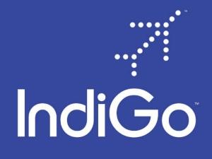 Indigo Set Launch Rs 2 500cr Ipo