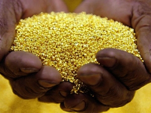 Gold Smuggling At All Time High Seizures Total Rs 1 000cr