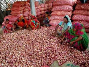 Govt Raises Minimum Export Price Onion