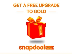Snapdeal Launches Its Premium Service Fight With Amazon Flip