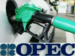 Opec Agreed Cut The Production Petrol Diesel Prices May Go Higher