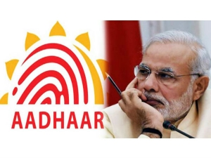 India S Aadhaar Program Wins Praises From World Bank