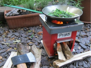 Rural India S Smoke Free Energy Efficient Low Cost Cook Stoves Startup