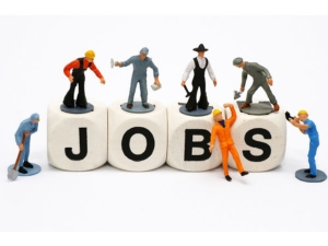 Do You Want Know Which Sectors Are Hiring India S Top 8 Metros