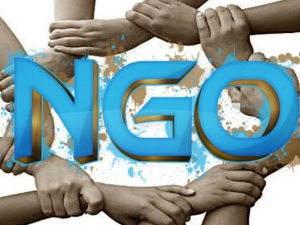 Top 10 Best Ngos The World