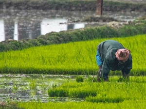 Farmers Income Will Be Doubled