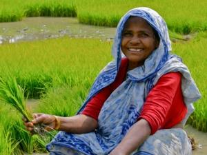 Uzavan App Farmers Tamil Nadu Budget