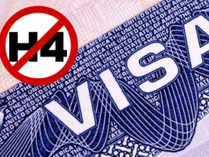 H4 Visa Repeal Final Stage 70 000 Spouses H1b Holders At Risk At Losing Jobs