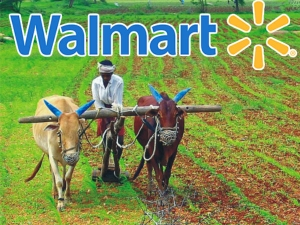 Entry Amazon Walmart Advantage India S Farmers