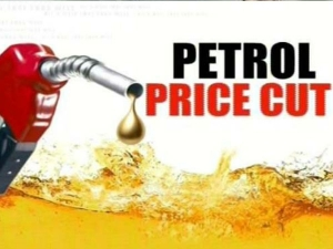 Soon Petrol Price Will Come Down 10 Methanol Usage Niti Aayog
